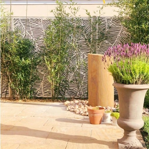 Screening for Gardens: 6 Ways to Improve Privacy in a Contemporary Garden